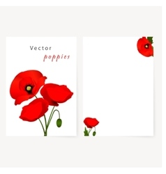 Template card with red flowers poppies vector image vector image