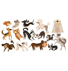Set funny dogs collection cartoon playing vector