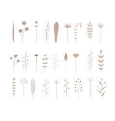 set of seamless botanical brushes set of stylized vector image