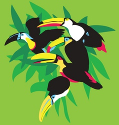 Toucans in palm leaves vector