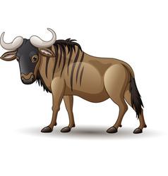Wildebeest isolated on white backg vector