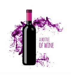 Red wine splash with bottle vector image vector image