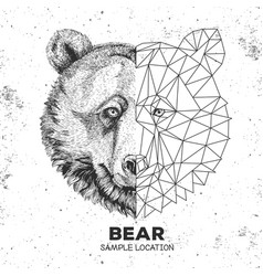 Hipster animal realistic and polygonal bear face vector