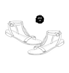 Isolated objects sandal shoes vector