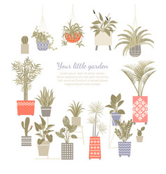 set home plants in decorated pots vector image