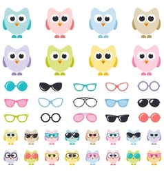 Set of colorful owls with sunglasses vector