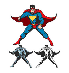 cartoon superhero set vector image
