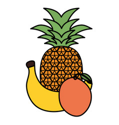 fresh pineapple with banana and orange vector image