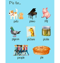 Many words begin with letter p vector