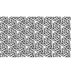 Black and White Geometric Pattern vector image