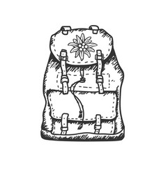 edelweiss flower icon backpack alpine icon vector image