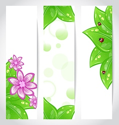 Set of bio concept design eco friendly banners vector image