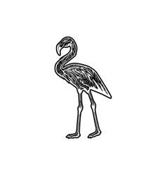 Stork flamingo logo design inspiration vector