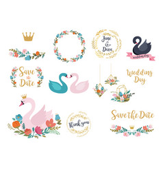 wedding and birthday set with swan lettering vector image vector image