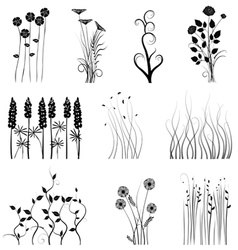 Set of plant vector image