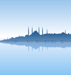 Istanbul and sea vector image vector image