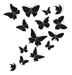 butterfly black silhouettes fly butterflies vector image
