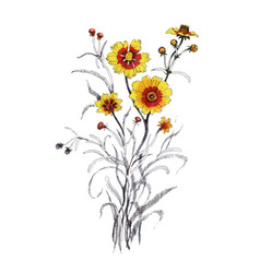 Hand drawn yellow flower isolated on white vector