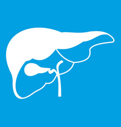 Liver icon white vector
