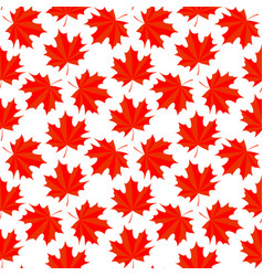 seamless background with colorful red maple leaves vector image