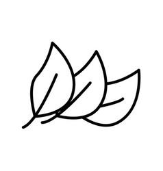 Thin line leaf icon vector