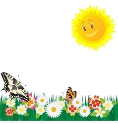 Wildflowers and butterflies vector
