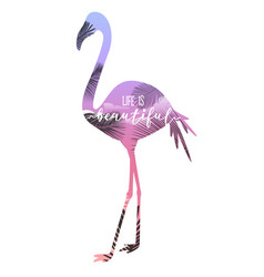 pink flamingo with lettering print vector image