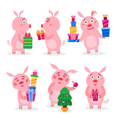 set christmas pigs with christmas gifts vector image