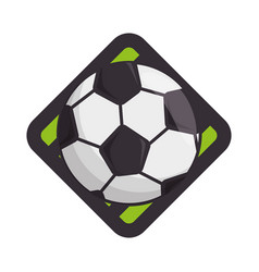 Soccer or football sport vector