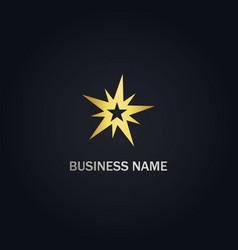 star shine abstract gold logo vector image