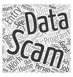 Data Entry Scams Word Cloud Concept vector image