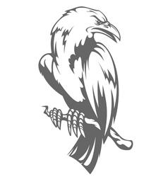 Dark raven on the branch vector image