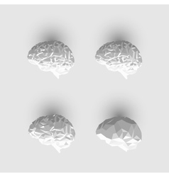 Set of low poly or paper brains vector