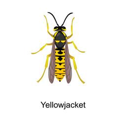 Hornet iconcartoon icon isolated vector
