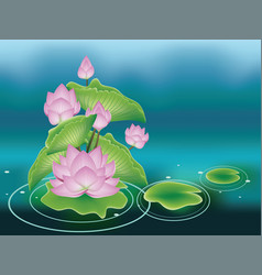 Lotus flower with leaves vector