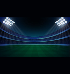 stadium with illumination vector image