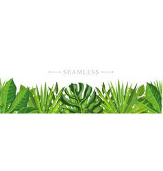tropical leaves seamless pattern border frame vector image