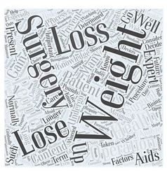 Weight Loss Surgery Word Cloud Concept vector image