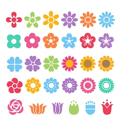 flower decorative set vector image