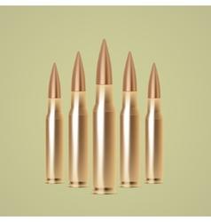 Rifle bullets vector image