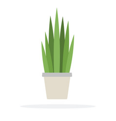 Bushes potted plant flat isolated vector