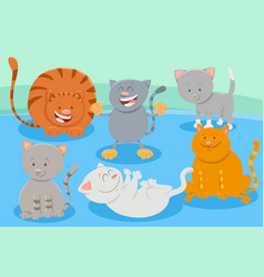 cats or kittens animal characters group vector image