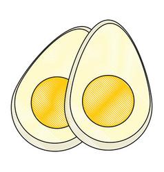 eggs icon image vector image