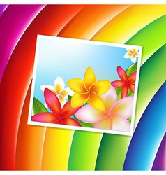 Fantastic Color Background With Flowers Card vector image