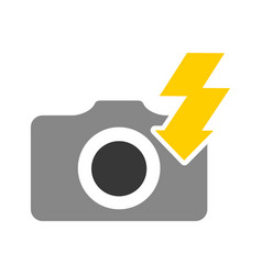 flash ray photographic item vector image