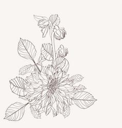 flowers bouquet in vintage beige line flowers vector image