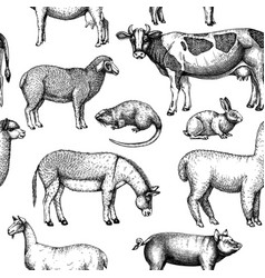 Hand-sketched farm animals on chalkboard c vector