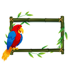 Parrot on bamboo frame vector