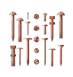 Set of copper fasteners the group symbol for the vector