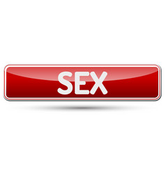 sex - abstract beautiful button with text vector image